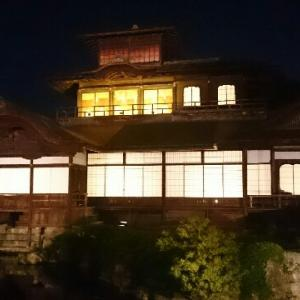 西本願寺花灯明にギリギリで行ってきた!【ライトアップ】