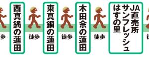 土浦はレンコンのまち! ~日本一のハス田めぐり~(茨城県土浦市)