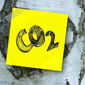 CO2排出ゼロを謳うロジックに本当に意味を見出せるのか