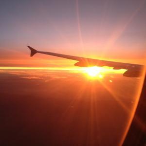 737MAX墜落事故、米連邦航空局&ボーイングの「深刻な怠慢の繰り返し」が事故の原因・ 米議会報告書