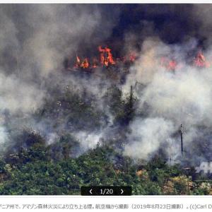 アマゾン森林火災、2日間で新たに1663件