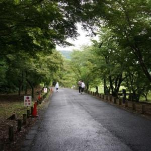 『令和』ゆかりの坂本八幡宮へ参拝