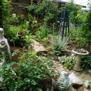 雨後の作業、草取り&植え替え