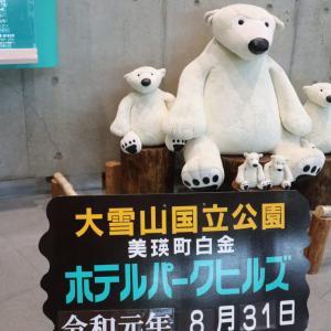 夏の北海道一人旅2019⑥ 白金温泉 白金四季の森ホテルパークヒルズへお泊り。
