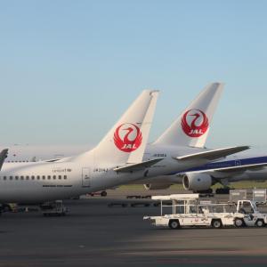 ずっとやりたかった事をする。JALのどこかにマイルで一人旅に行ってきます!