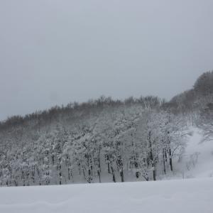 真冬の青森一人旅2、やっぱり雪といえば酸ヶ湯だな。