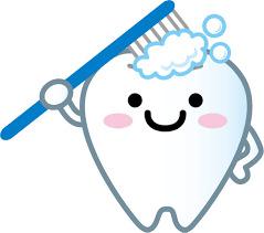 健康管理で見逃しがちな箇所は「歯」!?
