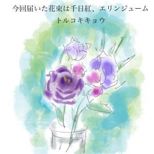 【PR】お花の定期便で思い出した人