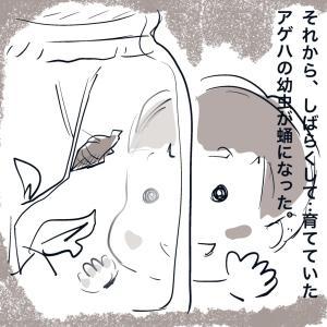 おかん子の昭和/ひでと君・9