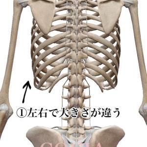 【痩せ型さん必見!】バストアップと肋骨の出っ張り・歪み解消方法