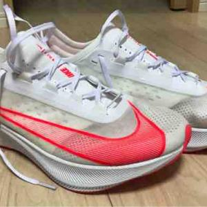Zoom Fly 3購入