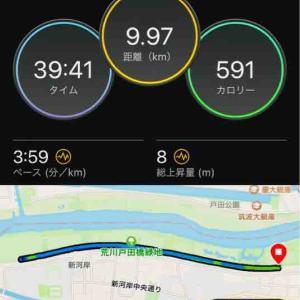 板橋月例チャレンジ10㎞+夕方ジョグ
