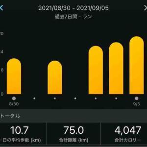 8/30-9/5纏め_予定外の城北練