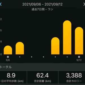 9/6-9/12週まとめ(本日ジョグ二部練)&別大2022