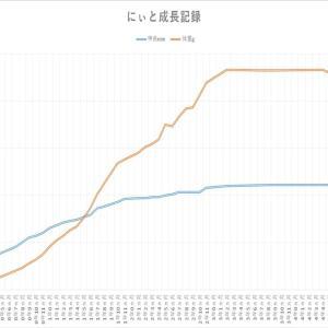 成長曲線(直線)