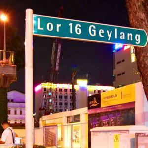 シリーズ・旅の空 @ シンガポール・ゲイラン 「ゲイランの夜の空」