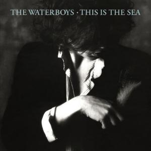 今僕はこんな音楽を聴いている (自称「音楽鑑賞家」)・ ALTERNATIVE LOVERS OF THE WORLD UNITE(コイワカメラの『これを聴け』) THE WATERBOYS - THE PAN WITHIN (リプライズ)