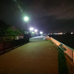 「碧南つり広場」~「衣浦海底トンネル」~「一色漁港」放浪記