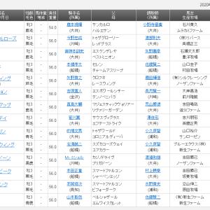 【予想】京浜盃2020 コバルトウイング移籍初戦