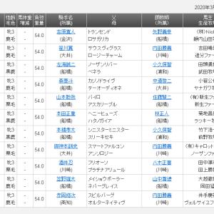 【予想】浦和桜花賞2020 レイチェルウーズ一冠目奪取へ