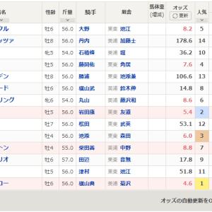 【予想】日経賞2020 ミッキースワローの安定度