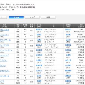 読売レディス杯2019を振り返る ジェッシージェニーが藤田凌騎手と共に重賞初制覇