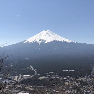 旅行記Ⅱ 霊峰富士