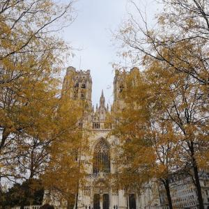 すっかり秋の色付き @ サンミッシェル大聖堂前