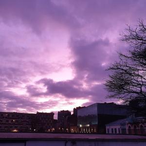 お土産探しの一日の終わりに紫色の空♪