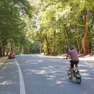 真夏到来でサイクリング&コールドブリューも定番化♪