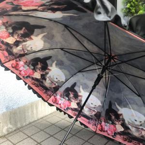 発達障害 障害年金 傘を失くさないでね