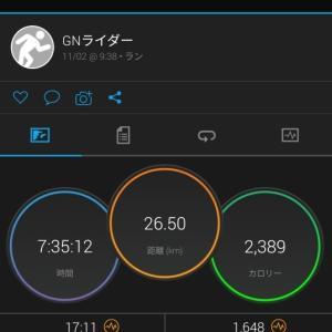 2019 赤赤トレイル縦走 ガーミン記録