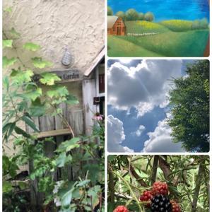庭の手入れするも早々に退散(*´Д`*) * 『夏の風景』加筆