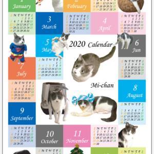 ウチの子年間カレンダー ミィちゃん♪