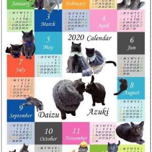 ウチの子年間カレンダー 小豆ママさん宅♪