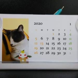 ウチの子月別カレンダー2020 ミィちゃん