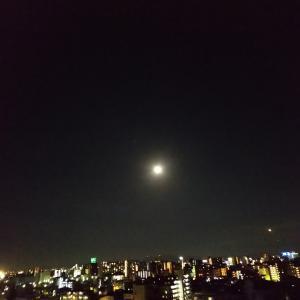 ねーねのツブヤキ( 満月の夜 ️ )