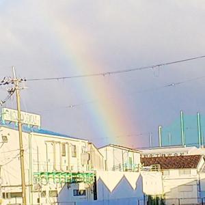 ねーね&トロのツブヤキ ( 虹 )