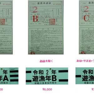 2020年(令和2年)球磨川漁協 遊漁券は若緑色 順次取り扱い開始