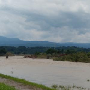 球磨川と川辺川の状況