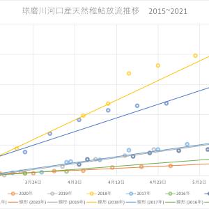 2021年 球磨川水系鮎放流量 5/6現在