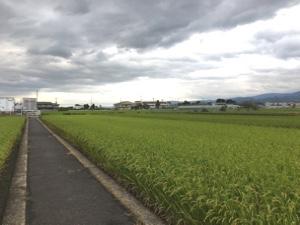 夏休み~奈良の旅~