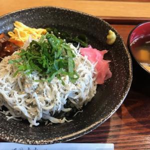 江の島の夏デート★しらす丼とかき氷