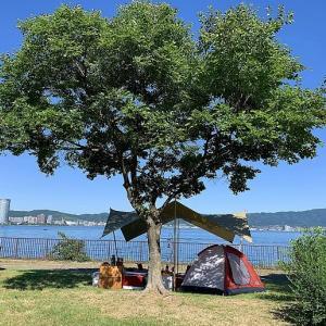 3年間使用!2人キャンプの時に張るタープはこれしかない!詳しくブログで紹介。