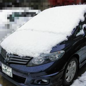 季節外れの大雪、意外と積もりました(;^_^A アセアセ…