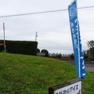 秋ヶ瀬公園~いちごの里吉見~四方吉うどん
