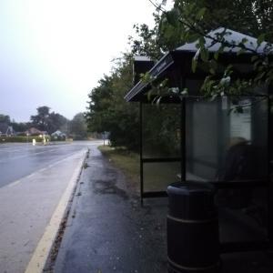 ヒッチハイクではなくバスでStonehenge(ストーンヘンジ)へ
