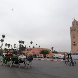 Marrakesh(マラケシュ)からImlil(イムリル)へ