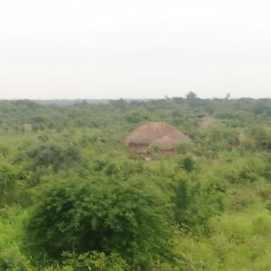 タンザン鉄道の車窓から タンザニアからザンビアへ Day 3 ザンビアンダンスとテント泊