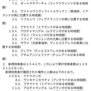 マダガスカル軟禁生活日記 その140 トマトセロリラーメンと野菜スープ